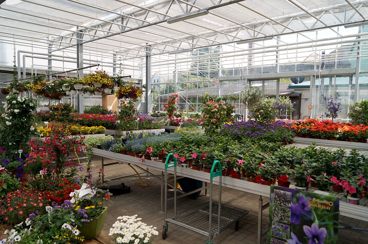 Abo & Lieferservice Bestellen von Blumen und Saison Gemüse